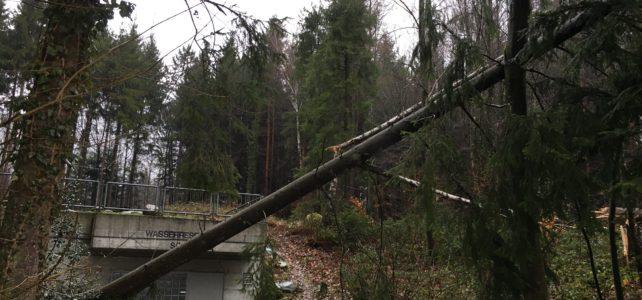 Sturm Burglind