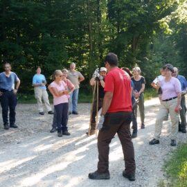 Waldarbeitstag und Waldgang der Baumpaten